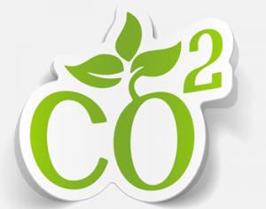 Chauffage biomasse : « croissance moins soutenue dans les prochaines années »