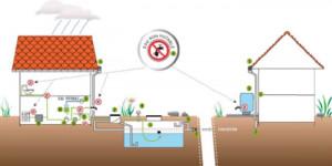 La récupération des eaux de pluie : une solution écologique et rentable