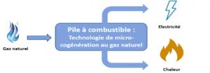 Chaudière à micro-cogénération ou pile à combustible pour la maison
