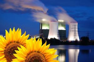 Les différentes filières énergétiques face à la nouvelle PPE