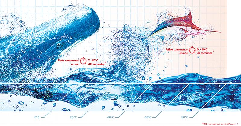 Avantages forte contenance en eau