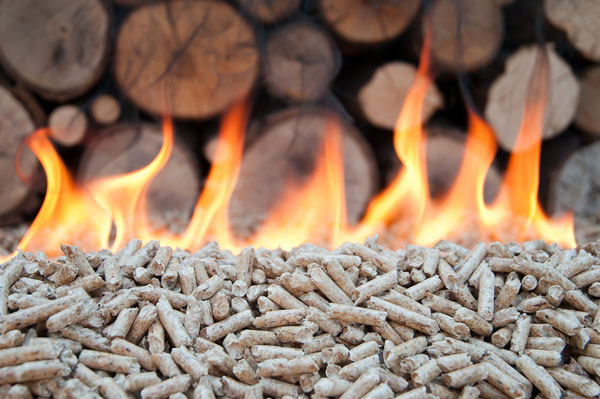 biomasse-chauffage.jpg
