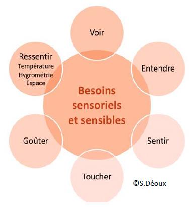 Besoins sensoriels humains