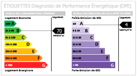 Etiquette diagnostic de performance énergétique