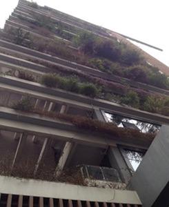 Façade végétale du bâtiment