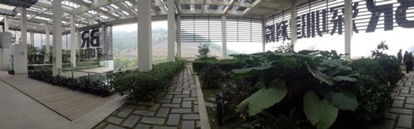 jardin potager du dernier étage
