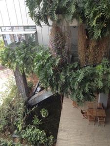 Jardin végétal