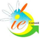 IE Conseil