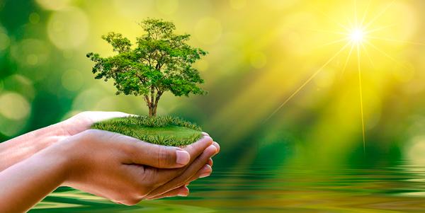 Energie solaire pour le développement durable