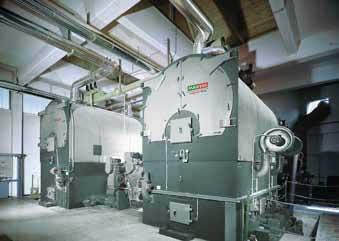 solution biomasse viessmann