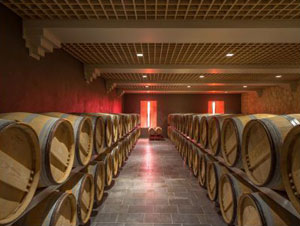Elevage des vins