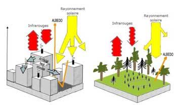 Flux d'énergie et de rayonnement au-dessus d'une zone urbaine et d'une zone rurale