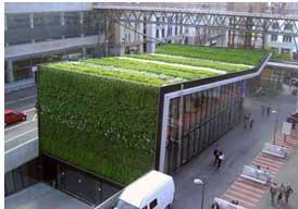 Mur et toit végétalisés