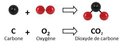 dioxyde carbone