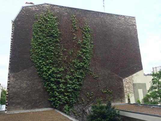 Ancienne façade copropriété