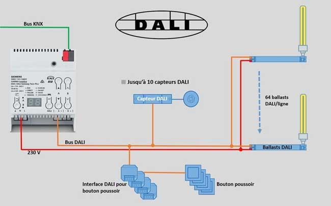 protocole DALI