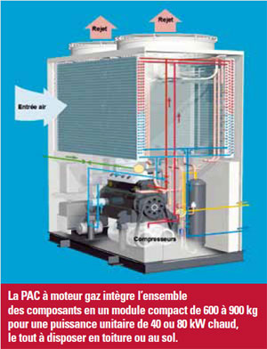 pac moteur gaz performance stable par grands froids. Black Bedroom Furniture Sets. Home Design Ideas