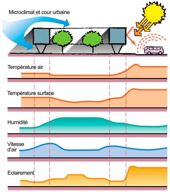 climat milieu urbain