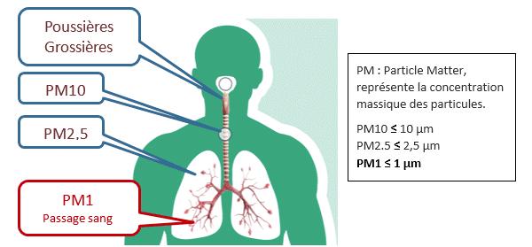 Pénétration de particules dans l'appareil respiratoire